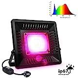 Pflanzenlampe Relassy COB Pflanzenlampe Vollspektrum Pflanzenlicht 50w mit 170cm Kabel und...