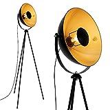 Briloner Leuchten - LED Stehleuchte, Stehlampe, Studiolampe, Studioleuchte, Wohnzimmerlampe,...