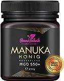 Manuka Honig | MGO 550+ (UMF 15+) | 250g | Das ORIGINAL aus NEUSEELAND | HOCHAKTIV, PUR, ROH &...
