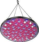 Niello® Reflector 50W LED Pflanzenlampe, LED Grow Light Vollspektrum Pflanzenlicht Led Grow Lamp...